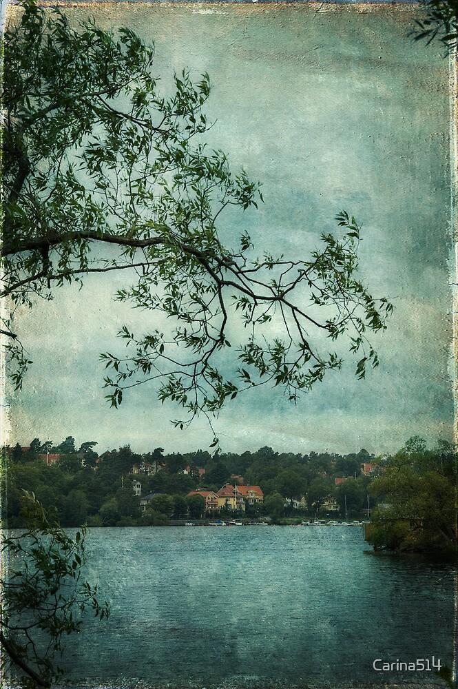 Overcast by Carina514