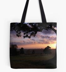 Last of the Forest Sun Tote Bag