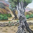 Olive Trees on Lipsos by Nick Randles