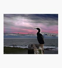 The Fisherman Rests Photographic Print