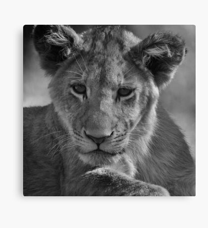 Dreams Of Being King Canvas Print