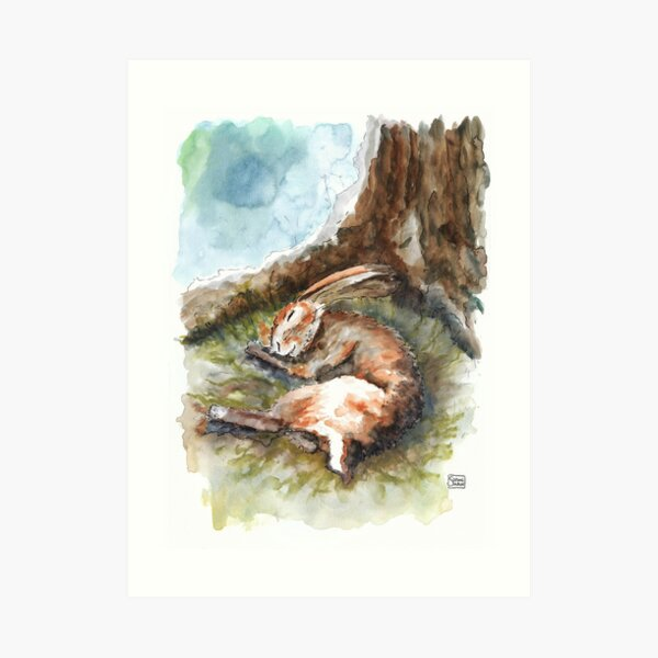 Hare Sleeping in his nest - watercolour Art Print