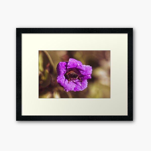 Bee Butt Framed Art Print