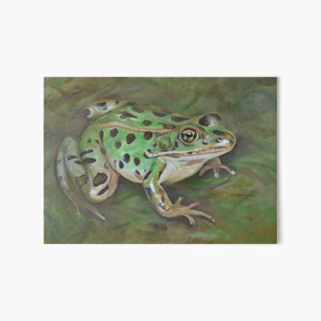 Northern Leopard Frog painting Art Board Print