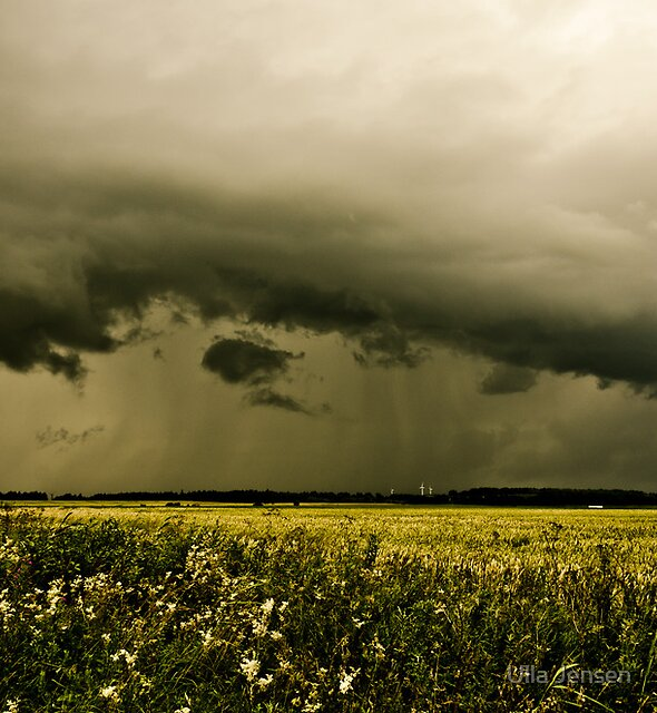 Summer storm by Ulla Jensen