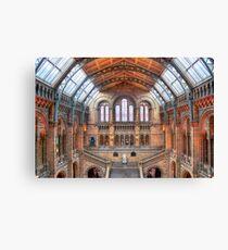 Natural History Museum - HDR Canvas Print