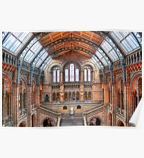 Natural History Museum - HDR Poster