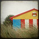 beachside by Anthony Mancuso