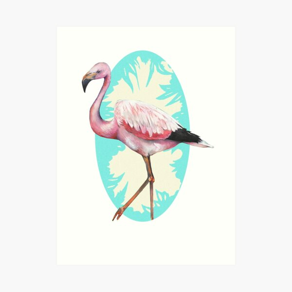 Andean Flamingo Art Print