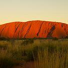 Uluru - Ayers Rock by Alex Colcheedas
