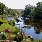 Early autumn on Dartmoor in Devon by Alex Cassels