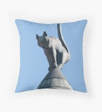 Caught on a roof Throw Pillow