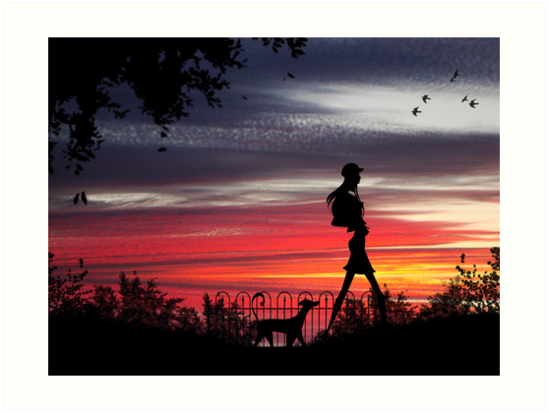 Walking the dog (Series) by Rookwood Studio ©