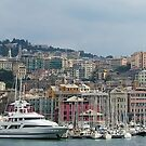 Genoa skyline II by Tom Gomez
