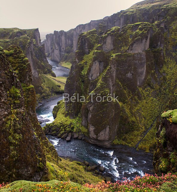 The Fjaðrárgljúfur canyon by Béla Török