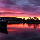 Triabunna Sunrise by Shane Viper
