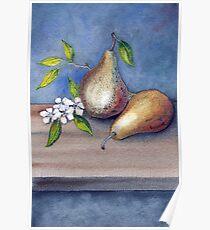 Watercolor 3 Pears Poster