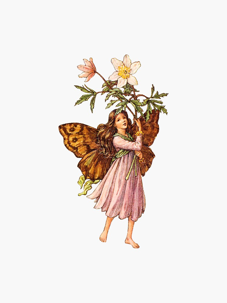 Flower fairies - Flower Fairy books by Cicely Mary Barker by angelslover
