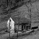 Old Virginia Shack by Mechelep