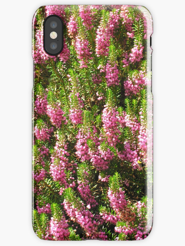 Summer heather for iPhone by Philip Mitchell