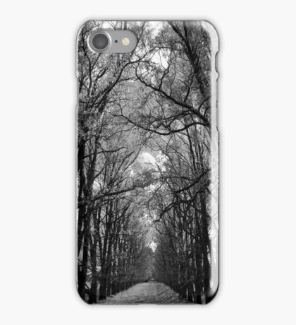 Into the Trees iPhone Case/Skin