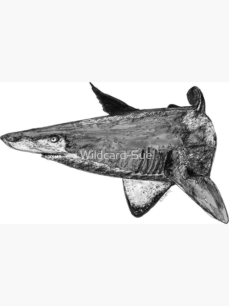 Rel the Grey Nurse Shark by Wildcard-Sue
