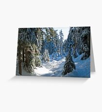 Beautiful BC Winter Day Greeting Card