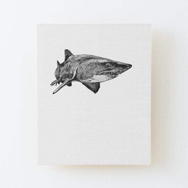 Mark the Grey Nurse Shark Wood Mounted Print