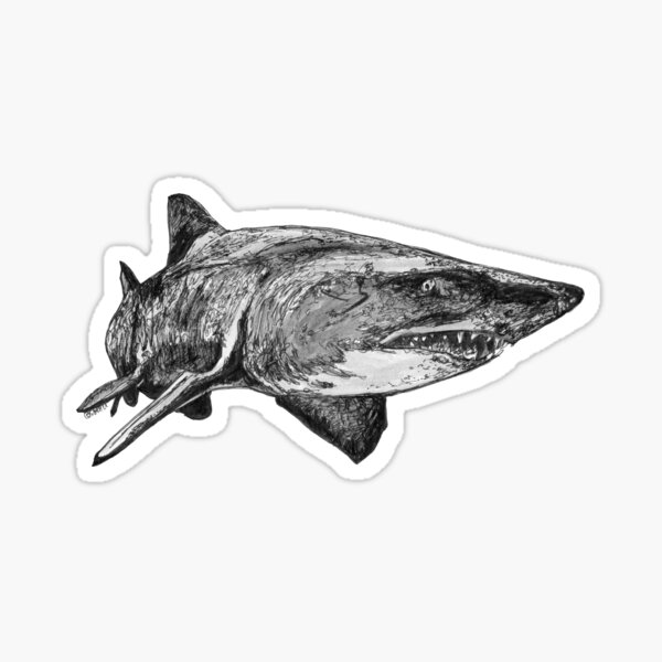 Mark the Grey Nurse Shark Sticker