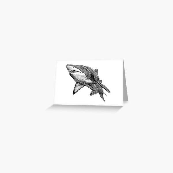 Nancy the Grey Nurse Shark Greeting Card