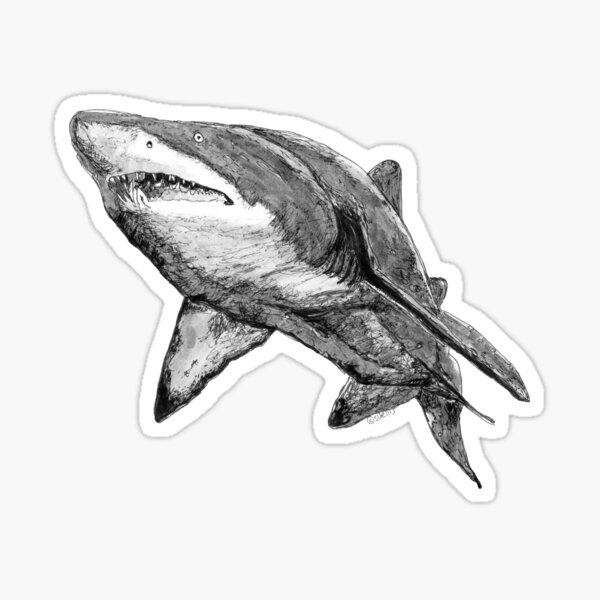 Nancy the Grey Nurse Shark Sticker