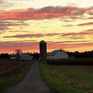 Dawn ~ Mount Joy Farm by Kelly Chiara
