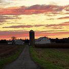 Dawn ~ Mount Joy Farm by Kelly Chiara