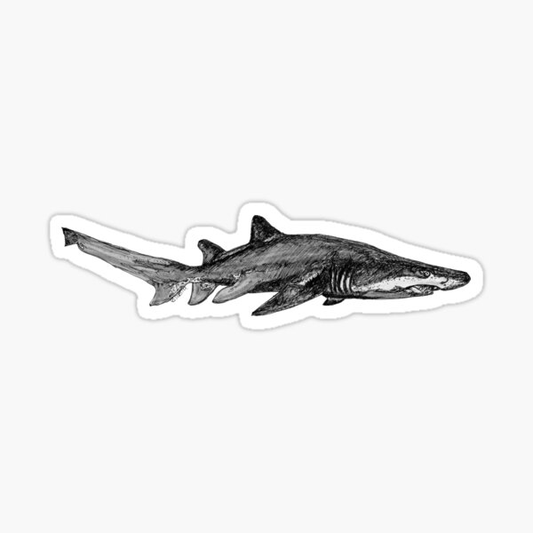 Trev the Grey Nurse Shark Sticker