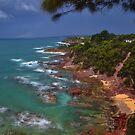 Eden coast by doug hunwick