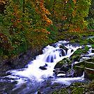 Tumwater Falls von William Carney