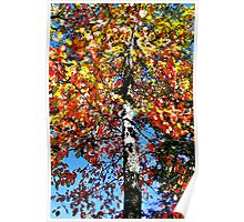 Tree of Colors Poster
