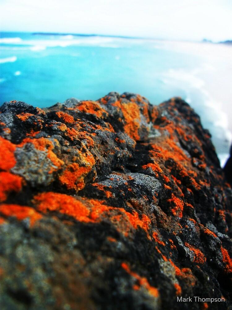 orange ocean blue by mark thompson