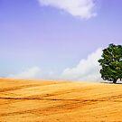 UK Landscape IIX by Matic Golob