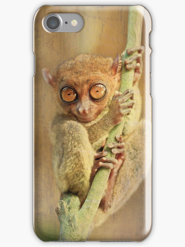 Phillipine tarsier by MotHaiBaPhoto Dmitry & Olga