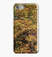 Autumn colours for iPhone iPhone Case/Skin