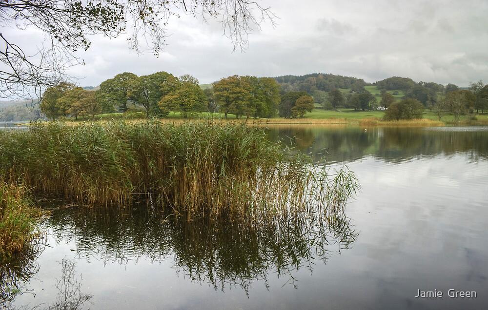 Esthwaite Water..At The Margins by Jamie  Green