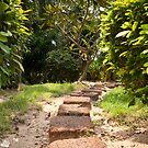 The Secret Garden by vanyahaheights