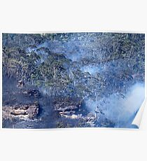 Fire at Echo Point Poster