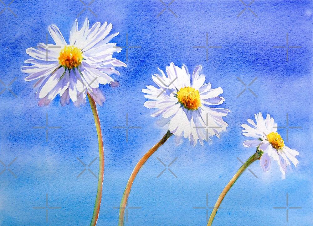 Daisy Daisy by Ruth S Harris