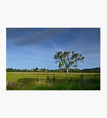 Mary Valley Country Photographic Print