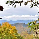 Bunches Bald Overlook on the Blue Ridge Pkwy NC by Kelly Nowak