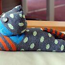 Sock Cat 2 by Karen Fitzsimons