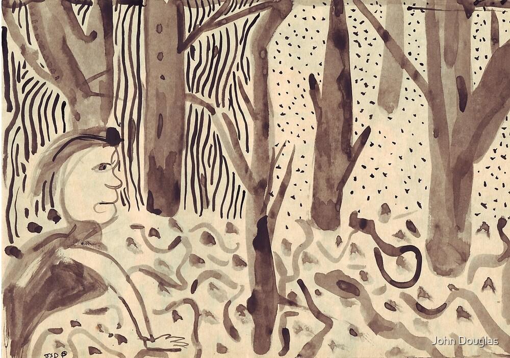 She Looks Among The Fallen Leaves by John Douglas