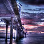 Brighton Jetty by Darryl Leach